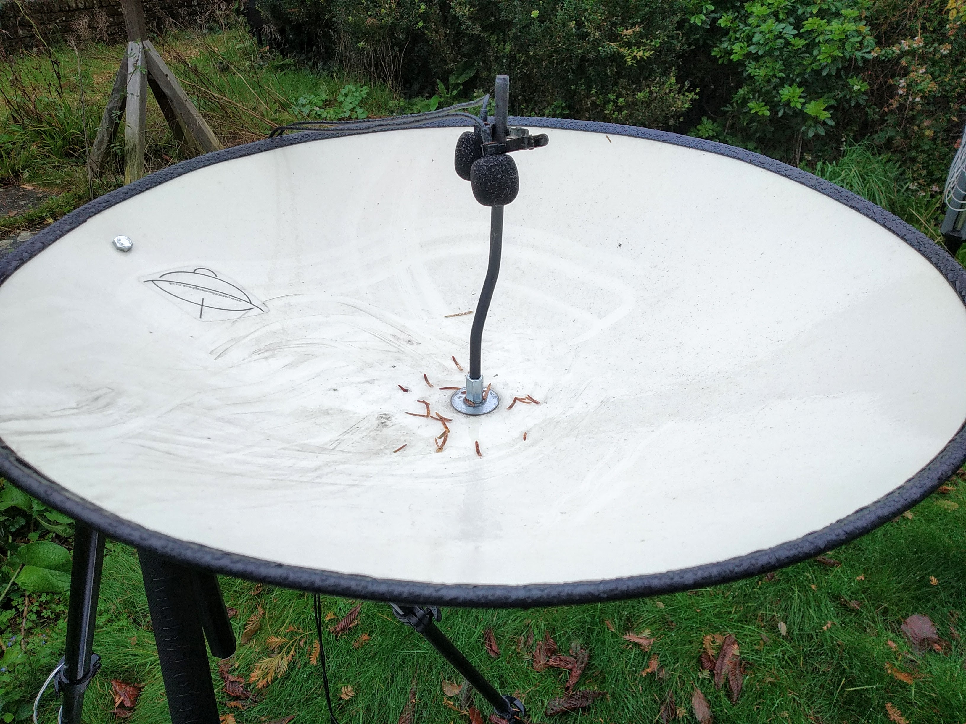 Parabolic dish with two microphones